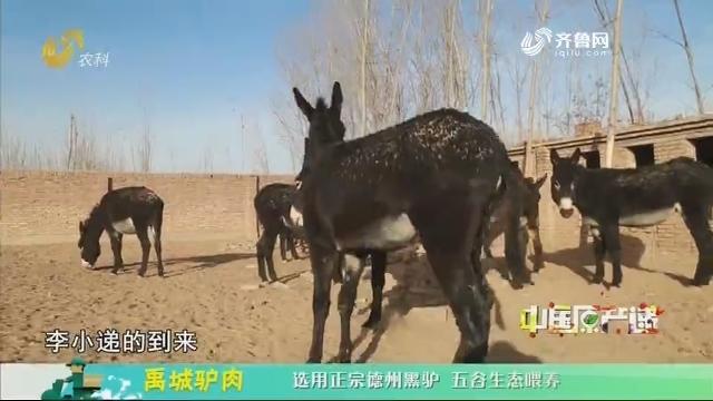 20200514《中国原产递》:禹城驴肉