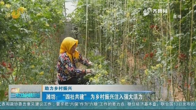 """【助力乡村振兴】潍坊:""""四社共建""""为乡村振兴注入强大活力"""