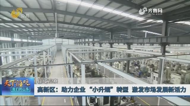 """【县域观察】高新区:助力企业""""小升规""""转型 激发市场发展新活力"""