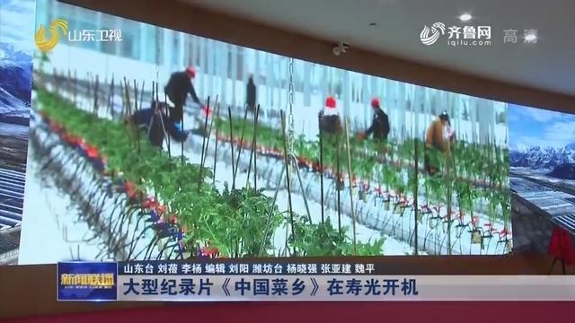 大型纪录片《中国菜乡》在寿光开机