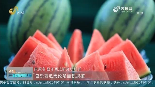 【走齐鲁 看样板】潍坊昌乐:优质火山西瓜进北京