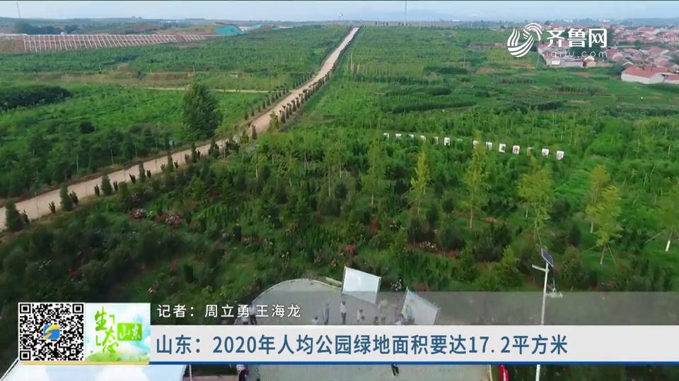 山东2022年人均公园绿地面积要达17.2平方米