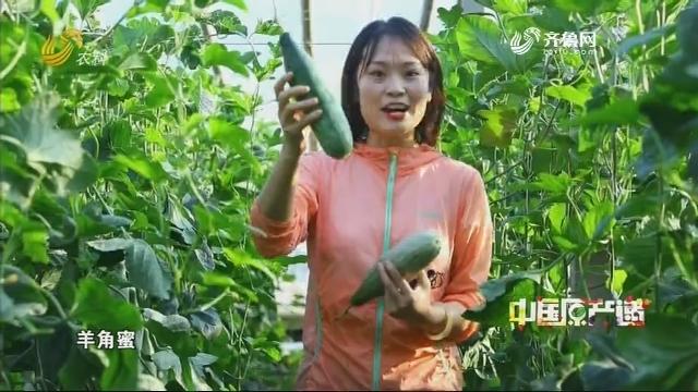 20200517《中国原产递》:羊角蜜