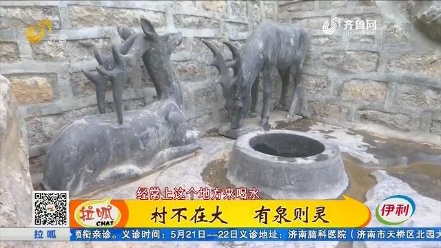 济南:村不在大 有泉则灵