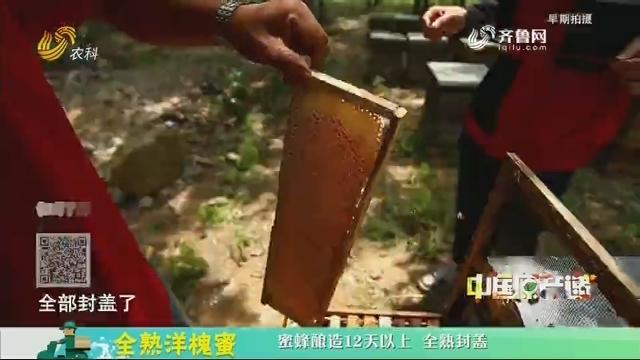 20200518《中国原产递》:全熟洋槐蜜
