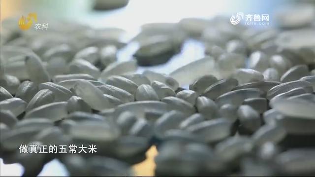 20200519《中国原产递》:五常大米