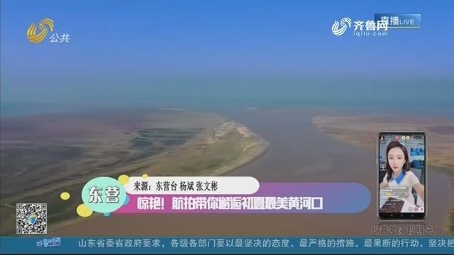 东营:惊艳!航拍带你邂逅初夏最美黄河口