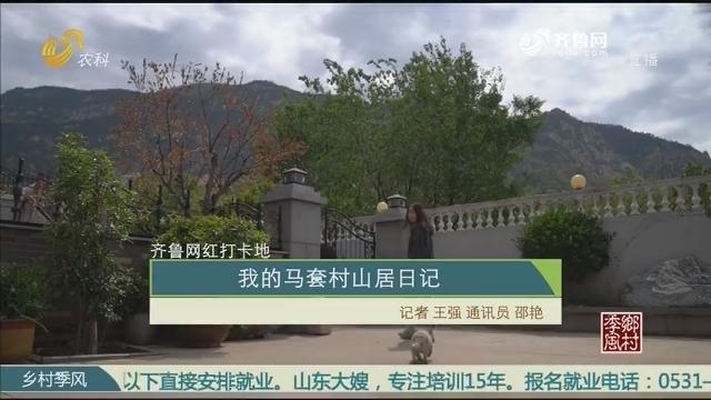 【齐鲁网红打卡地】我的马套村山居日记