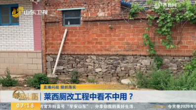 【直播问政 狠抓落实】莱西厕改工程中看不中用?