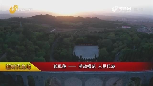 【新时代先锋】郭凤莲——劳动模范 人民代表