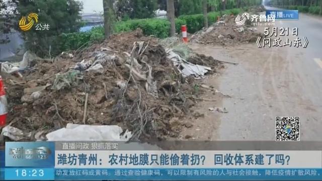 【直播问政 狠抓落实 】潍坊青州:农村地膜只能偷着扔? 回收体系建了吗?