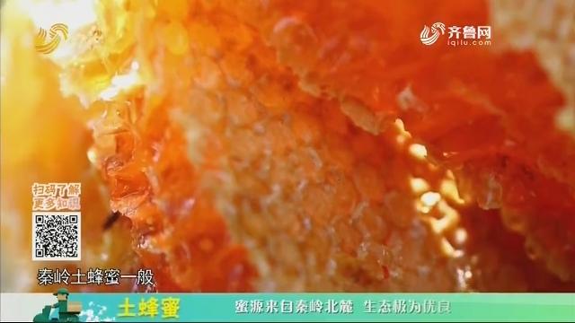 20200523《中国原产递》:土蜂蜜