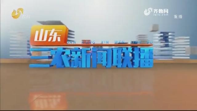 2020年05月23日山东三农新闻联播完整版