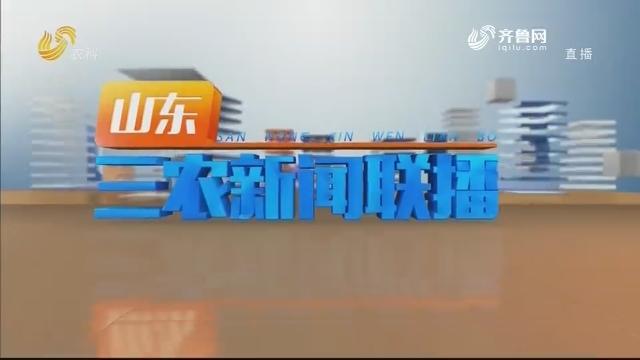2020年05月24日山东三农新闻联播完整版