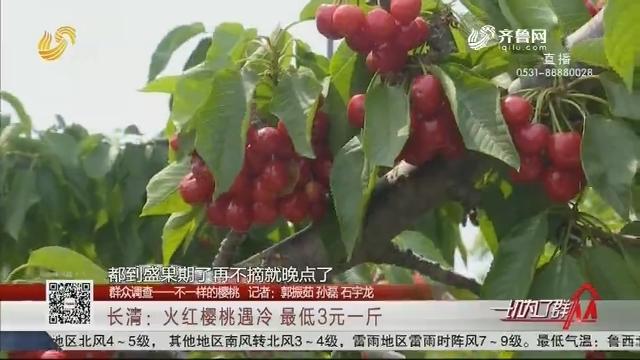 【群众调查——不一样的樱桃】长清:火红樱桃遇冷 最低3元一斤