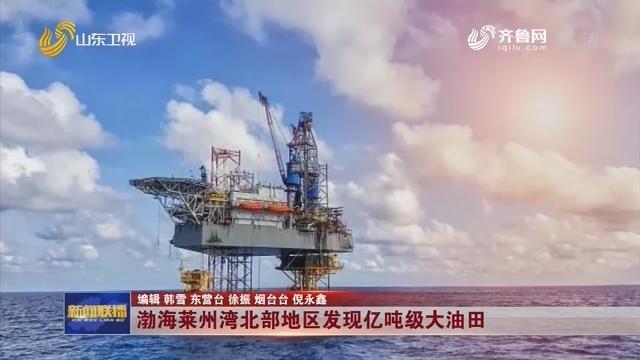渤海莱州湾北部地区发现亿吨级大油田