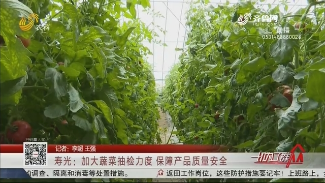 寿光:加大蔬菜抽检力度 保障产品质量安全