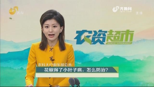 【农科大户俱乐部会员】花椒得了小叶子病,怎么防治?