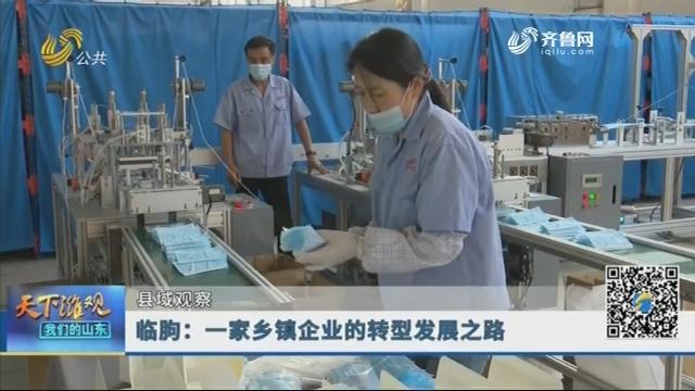 【县域观察】临朐:一家乡镇企业的转型发展之路