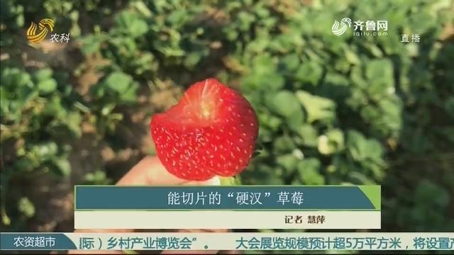 """能切片的""""硬汉""""草莓"""