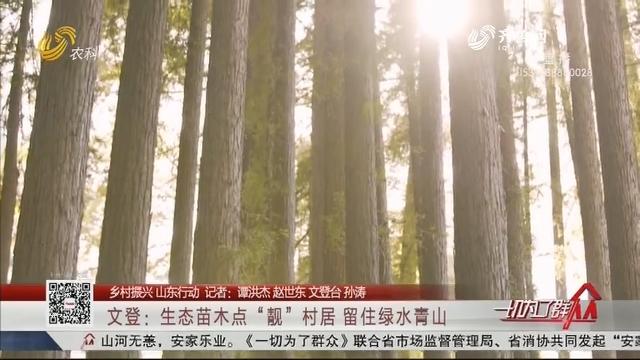 """【乡村振兴 山东行动】文登:生态苗木点""""靓""""村居 留住绿水青山"""
