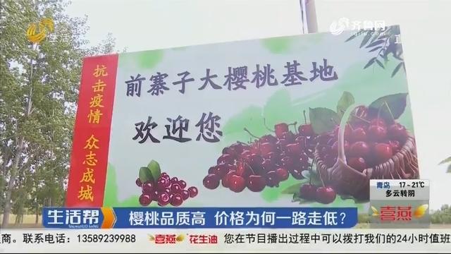 樱桃品质高 价格为何一路走低?