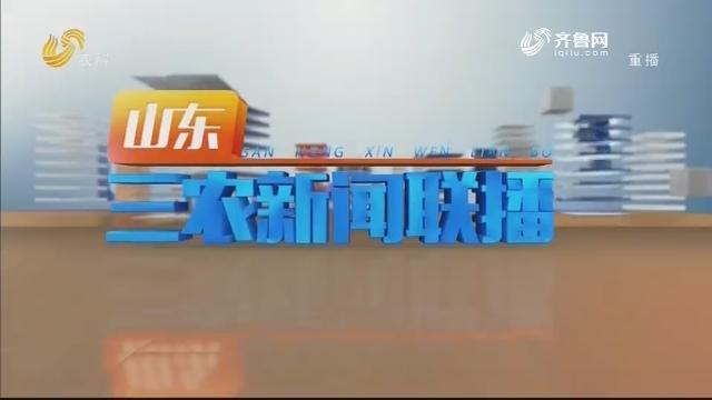 2020年05月29日山东三农新闻联播完整版
