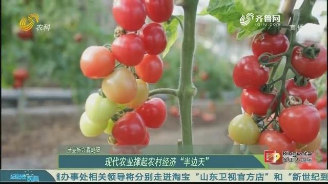 """20200531《总站长时间》:产业振兴看城阳 现代农业撑起农村经济""""半边天"""""""