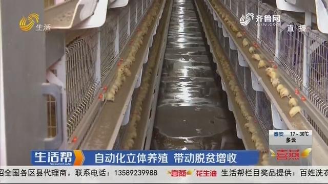 聊城:自动化立体养殖 带动脱贫增收