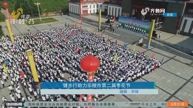 健步行助力乐陵市第二届枣花节