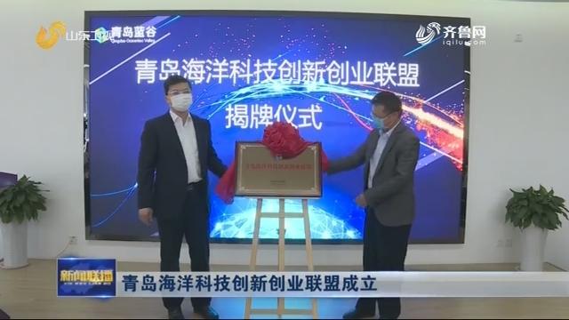 青岛海洋科技创新创业联盟成立