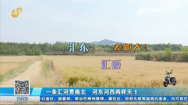 济南:一条汇河贯南北 河东河西两样天!