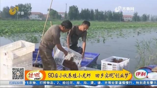 """鱼台:90后小伙养殖小龙虾 回乡实现""""创业梦"""""""