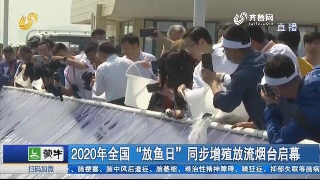 """2020年全国""""放鱼日""""同步增殖放流烟台启幕"""