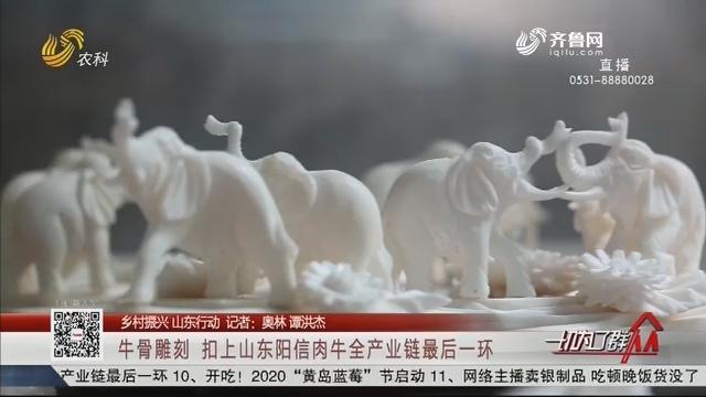 【乡村振兴 山东行动】牛骨雕刻 扣上山东阳信肉牛全产业链最后一环