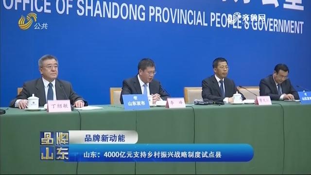 【品牌新动能】山东:4000亿元支持乡村振兴战略制度试点县