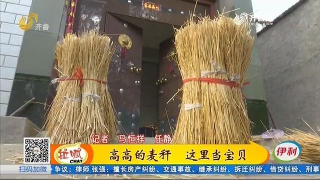 新泰:麦秆做扇子 环保又挣钱