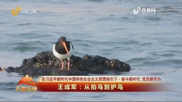 20200608《齐鲁先锋》:王成军——从拍鸟到护鸟