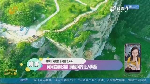 聊城:黄河森林公园 旖旎风光让人陶醉