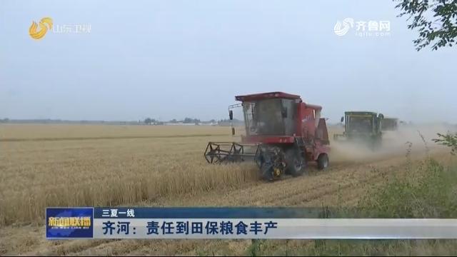【三夏一线】齐河:责任到田保粮食丰产