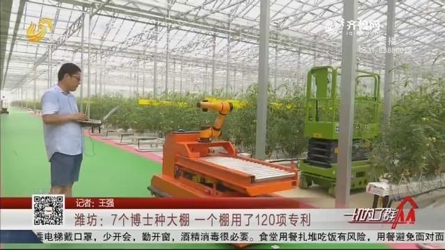 潍坊:7个博士种大棚 一个棚用了120项专利