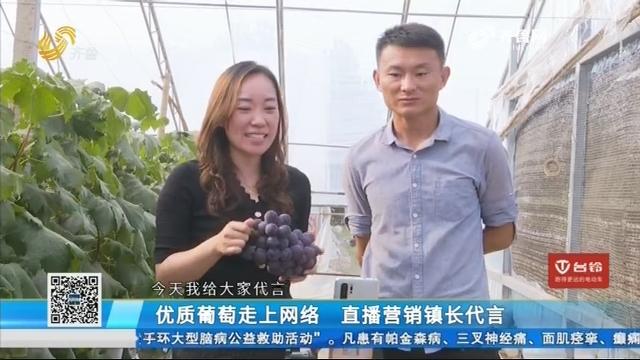 聊城:优质葡萄走上网络 直播营销镇长代言