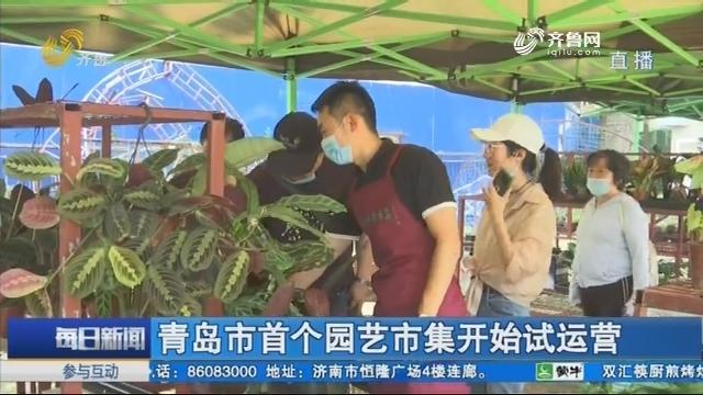 青岛市首个园艺市集开始试运营