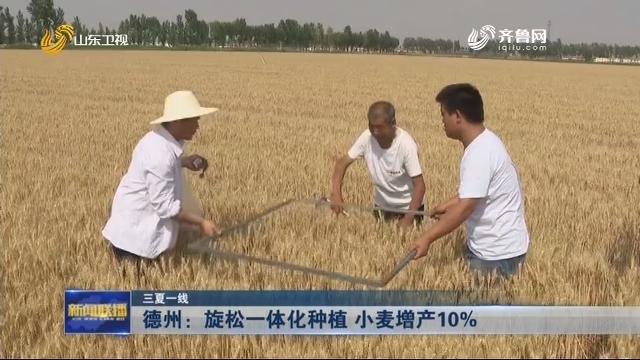 【三夏一线】德州:旋松一体化种植 小麦增产10%