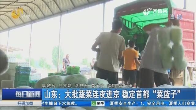 """山东:大批蔬菜连夜进京 稳定首都""""菜蓝子"""""""