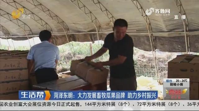 菏泽东明:大力发展畜牧瓜果品牌 助力乡村振兴