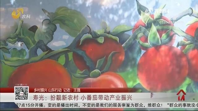 【乡村振兴 山东行动】寿光:扮靓新农村 小番茄带动产业振兴