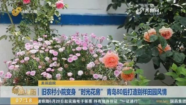 """旧农村小院变身""""时光花房"""" 青岛80后打造别样田园风情"""