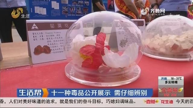 济南:十一种毒品公开展示 需仔细辨别