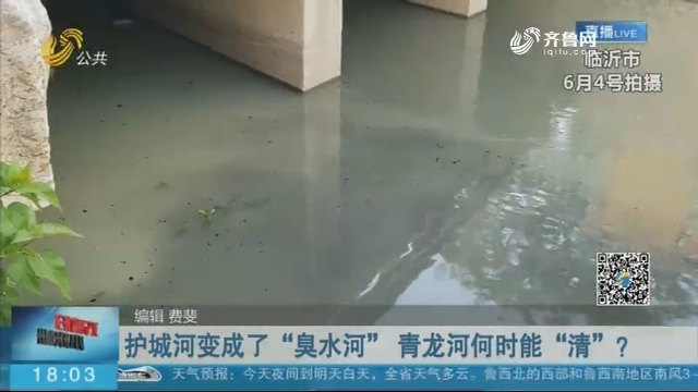 """护城河变成了""""臭水河"""" 青龙河何时能""""清""""?"""